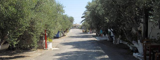 Camping Koutsounari Ιεράπετρα - Δωμάτια και Studios